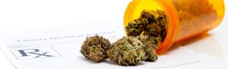 Medical Marijuana a Hit With Seniors